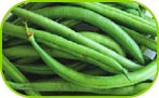 Green beans whole 250g/500g